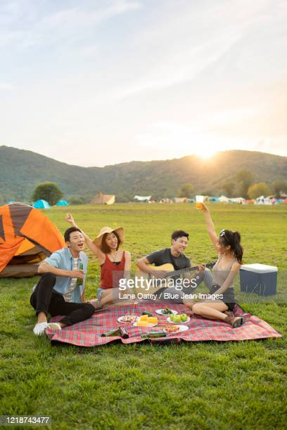 happy young chinese friends having a picnic outdoors - musical equipment stock pictures, royalty-free photos & images