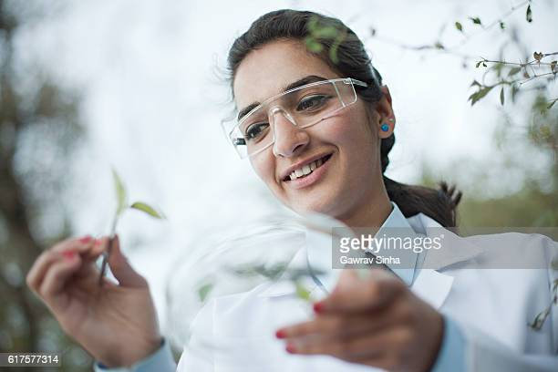 Happy young female Botanist collecting sample of leafs.