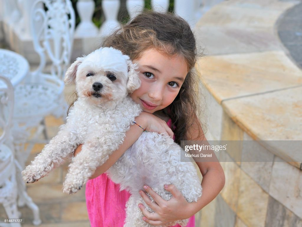 Happy young girl holding a white toy poodle : Stock Photo