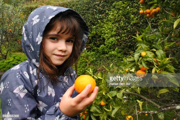 happy young girl picks fruit - rafael ben ari stockfoto's en -beelden