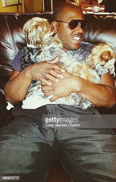 happy young man sitting with norfolk terrier dogs on sofa in house - norfolk terrier photos et images de collection