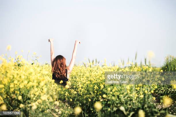 happy young woman enjoying summer in yellow field at sunset - natural condition stock pictures, royalty-free photos & images