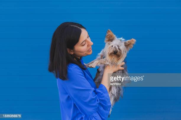 happy young woman holding affectionately a york shire terrier puppy. - friendly match stock pictures, royalty-free photos & images