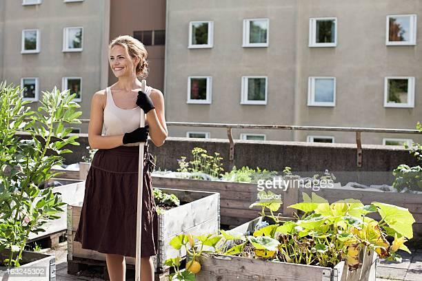 happy young woman looking away while standing at urban garden - terrassenfeld stock-fotos und bilder