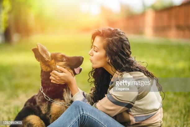 giovane donna felice che gioca con il suo cane sull'erba nel parco - pastore tedesco foto e immagini stock