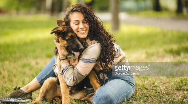 happy young woman playing with her dog on the grass in park - german shepherd stock pictures, royalty-free photos & images