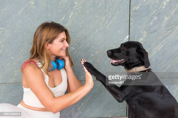 happy young woman with her black dog - animal tamer stock photos and pictures
