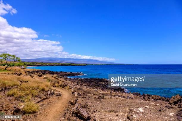 hapuna beach, big island, hawaii, usa - hapuna beach stock photos and pictures