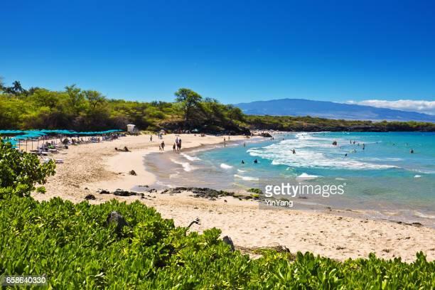 hapuna beach on the big island of hawaii - kona coast stock photos and pictures