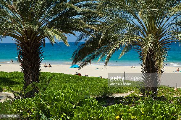 Hapuna Beach State Recreation Area is a large park and sandy beach on the Big Island of Hawaii Hapuna is one of a few other white sand beaches on the...