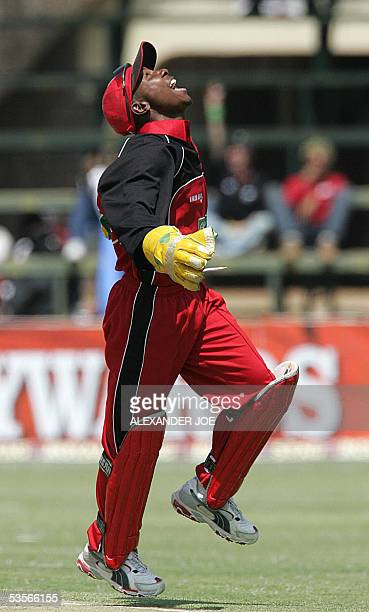 Zimbabwe's wicketkeeper and captain Tatenda Taibu celebrates catching out Hamish Marshall of New Zealand 31 August 2005 during the fourth, one-day...