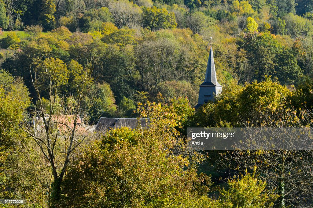 Steeple of the church of Haraucourt over the trees. : News Photo