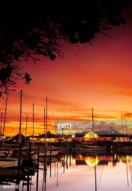 harbor at evening - whangarei heads stock-fotos und bilder