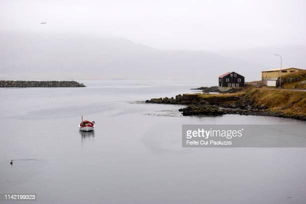 harbor of djúpivogur, east iceland - austurland stock-fotos und bilder