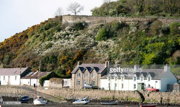 harbor of fishguard in pembrokeshire, wales - south wales stock pictures, royalty-free photos & images