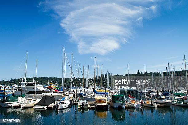 harbor on bainbridge island - bainbridge island stock pictures, royalty-free photos & images