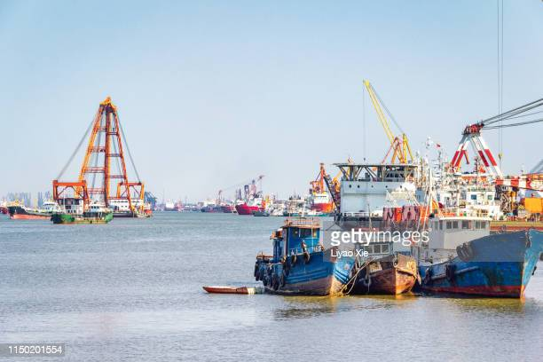 harbor - liyao xie stock pictures, royalty-free photos & images