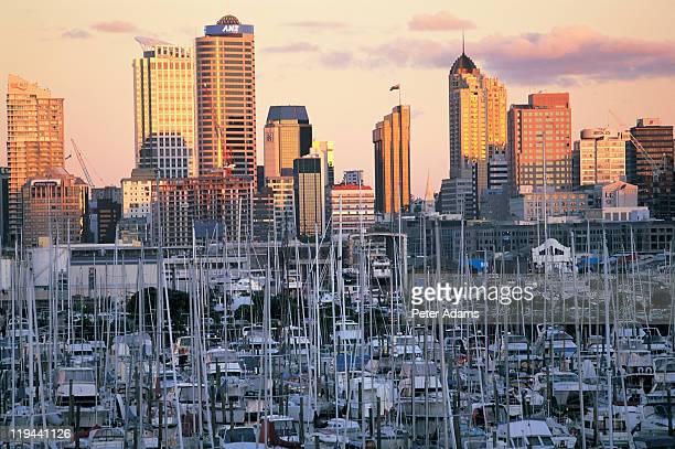 Harbour & Auckland skyline, New Zealand