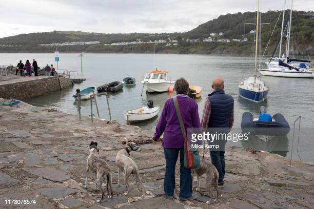 Harbour in New Quay Ceredigion Wales United Kingdom New Quay is a seaside town in Ceredigion Wales located on Cardigan Bay with a harbour and large...