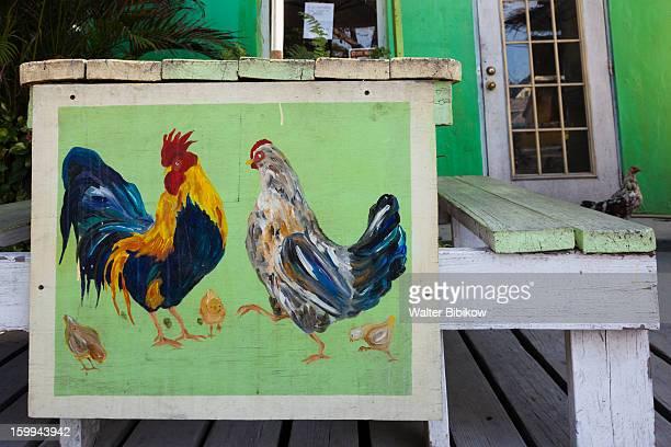 harbour island, bahamas, chickens - ダンモアタウン ストックフォトと画像