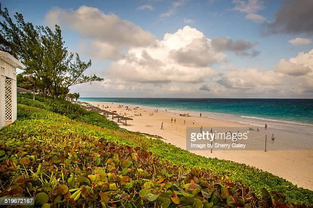 harbour island beach scene - harbor island bahamas stock photos and pictures