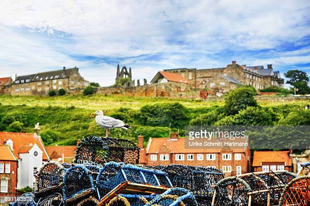Harbour scene in Whitby with lobster traps