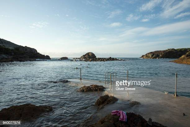 Harbour Swimmers