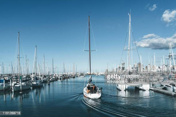 harbour with boats in auckland new zealand yachts moored in a harbor - auckland stock pictures, royalty-free photos & images