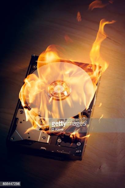 hard disk - computer bug stock photos and pictures