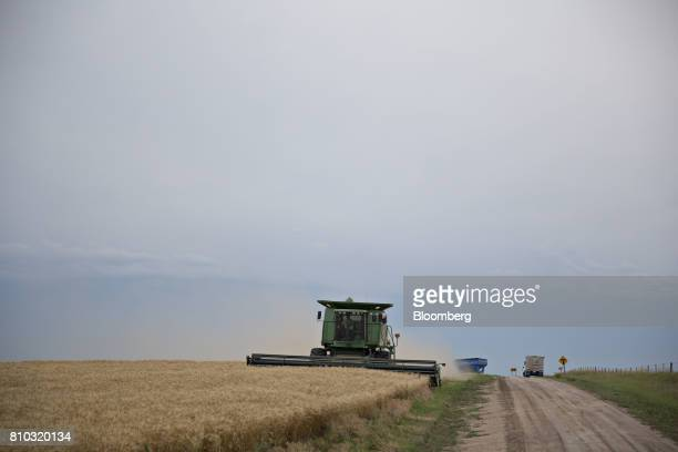 Hard red winter wheat is harvested with a Deere Co John Deere combine harvester in Zurich Kansas US on Thursday June 29 2017 Spring wheat prices...