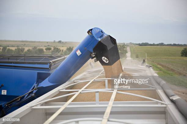 Hard red winter wheat is loaded into a grain trailer during harvest in Zurich Kansas US on Thursday June 29 2017 Spring wheat prices posted wide...