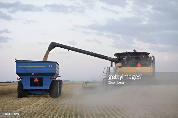 Hard red winter wheat is unloaded into a grain cart from a CNH Industrial New Holland combine harvester in Plainville Kansas US on Wednesday June 28...