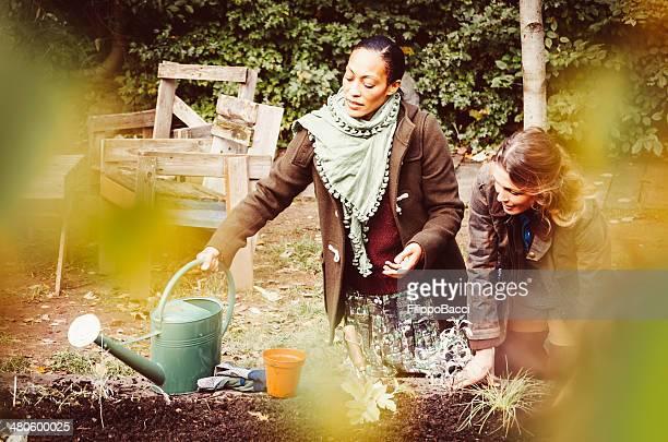 Harte Arbeit im Garten