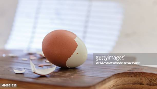 hard-boiled egg. - hard boiled eggs stock photos and pictures