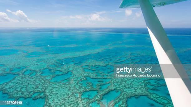hardy reef, great barrier reef from above, queensland, australia. - francesco riccardo iacomino australia foto e immagini stock