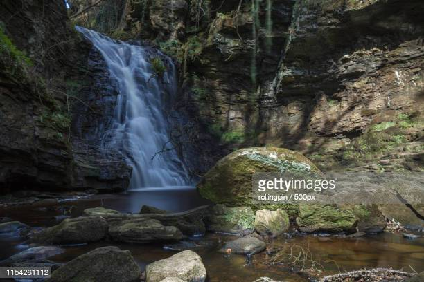 hareshaw linn, bellidargm - bellingham stock pictures, royalty-free photos & images