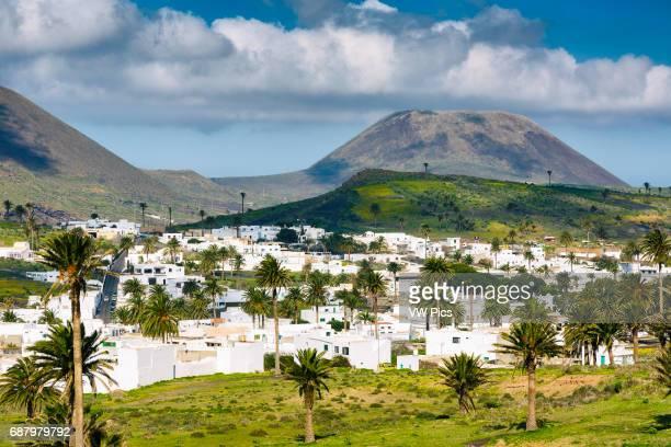 Haria. Lanzarote, Canary Islands, Spain, Europe.