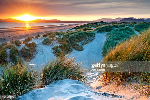 harlech sand dunes and tremadog bay at sunset - snowdonia stock photos and pictures