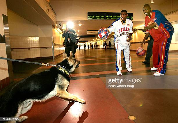 Harlem Globetrotters Nate Lofton right and Anthony Blakes left tease a LA Sheriff's Department police dog before riding the Red and Blue Metro Lines...
