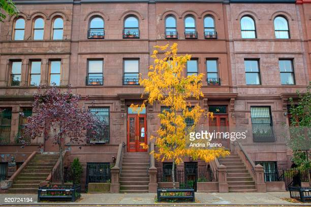 harlem row houses - harlem stock pictures, royalty-free photos & images
