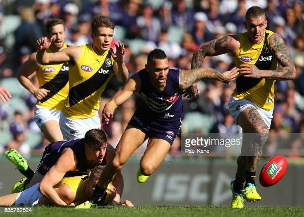 Harley Bennell of the Dockers contests for the ball against Dustin Martin of the Tigers during the round 22 AFL match between the Fremantle Dockers...