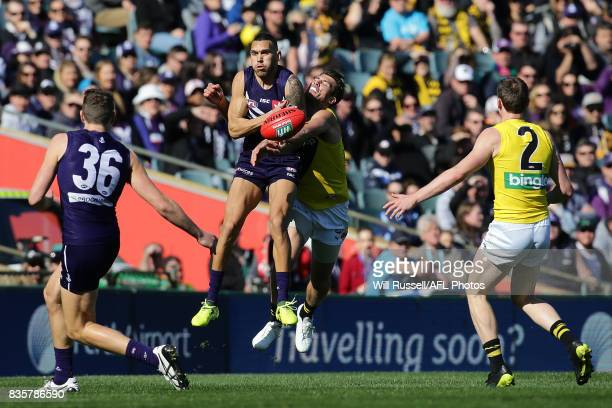 Harley Bennell of the Dockers marks the ball during the round 22 AFL match between the Fremantle Dockers and the Richmond Tigers at Domain Stadium on...