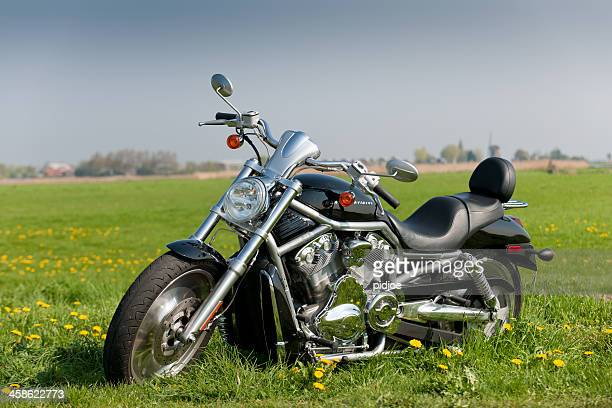 Harley Davidson in meadow