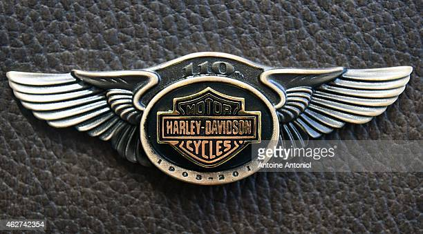 Harley Davidson logo is seen on a 2013 Harley Davidson 1 690 cm3 FLSTC Heritage Softail Classic donated to Pope Benoit XVI and signed by him on its...