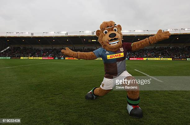 Harley the Harlequins Mascot sports a moustache to show his support for upcoming Movember prior to the Aviva Premiership match between Harlequins and...