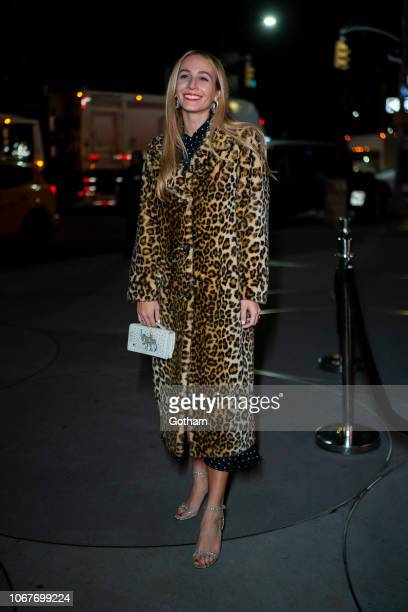 Harley VieraNewton attends the 2018 Guggenheim International Gala preparty in the Upper East Side on November 14 2018 in New York City
