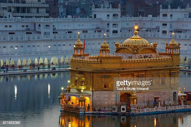 harmandir sahib temple in amritsar, india - golden temple india stock photos and pictures