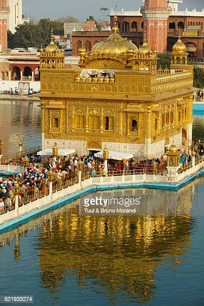 harmandir sahib temple in amritsar, india - amritsar stock pictures, royalty-free photos & images