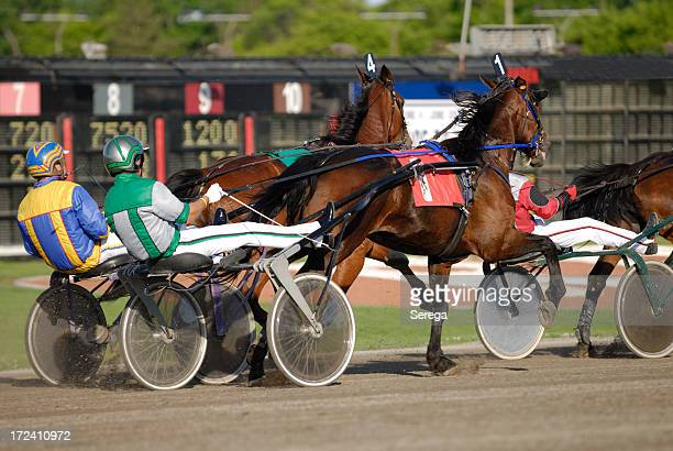 Harness horse Racing