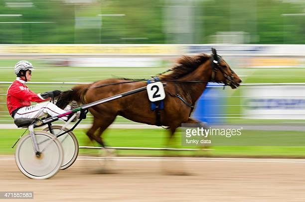 Harness racer